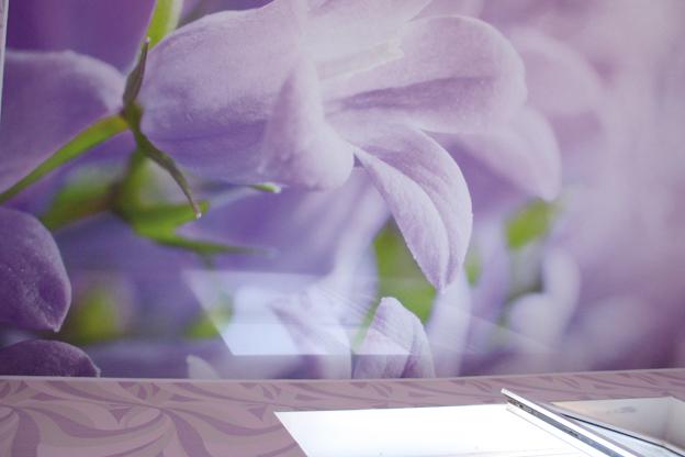 фото фотопечать орхидеи